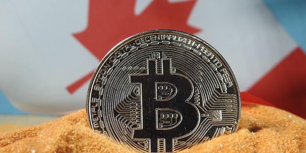 Devez-vous succomber à la Bitcoin mania?